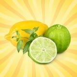 Lemon. Lime acid yellow citric closeup citron stock images