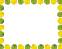 Lemon and lime border Stock Photos
