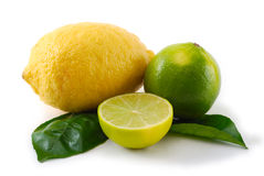 Lemon and lime with green leaves Stock Image