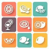 Lemon, lime icons set. Lemon, lime icons  colored set with shadow Stock Photos