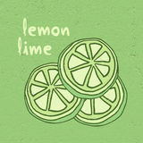 Lemon lime illustration Royalty Free Stock Photography