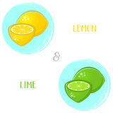 Lemon and lime illustrations Stock Photo