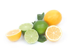 Lemon and lime isolated on white background Stock Photos