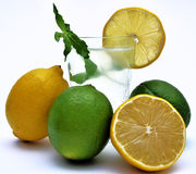 Lemon and Lime juice with natural menta.  Stock Photo
