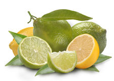 Lemon and lime with leaves Royalty Free Stock Photo