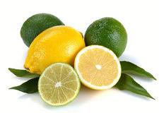 Lemon and lime with leaves Stock Images