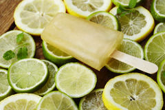 Lemon and lime lolly Royalty Free Stock Images