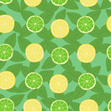 Lemon, lime and mint leaves seamless pattern Royalty Free Stock Photos
