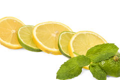 Lemon and lime mixed slices Stock Images