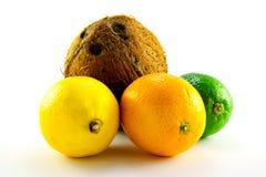 Lemon, Lime, Orange And Coconut Royalty Free Stock Photography