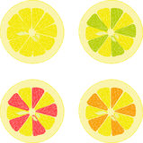Lemon, lime, orange, pink grapefruit, pomelo collection of  illustrations on a transparent background Stock Photography