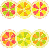 Lemon, lime, orange, pink grapefruit, pomelo collection of  illustrations Stock Image