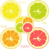 Lemon, lime, orange, pink grapefruit, pomelo on a transparent background Stock Photos