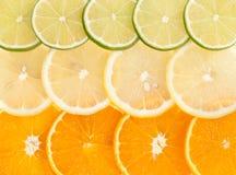 Lemon lime orange slices Royalty Free Stock Images