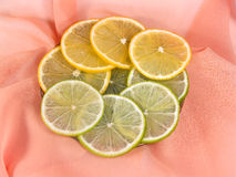 Lemon and lime on a pink background Stock Image