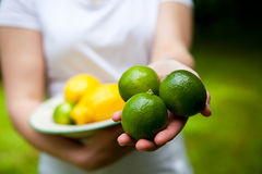 Lemon and lime on a plate. Fresh and delicious lemon and lime on a plate, held by woman's hands Royalty Free Stock Image