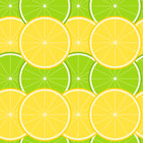 Lemon and Lime Seamless Pattern Stock Photography