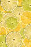 Lemon And Lime Slice Abstract Stock Images