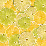Lemon And Lime Slice Abstract Royalty Free Stock Photos