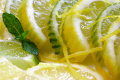 Lemon and Lime slices. Overlapped on a plate stock images