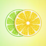 Lemon and lime slices Stock Photos