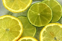 Lemon and lime slices in caronated water Royalty Free Stock Photography