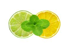 Lemon and lime slices and mint herb isolated on white Stock Photography