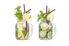 Lemon lime soda mint rosemary fresh drink isolated Royalty Free Stock Image