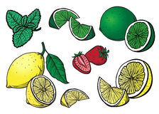 Lemon lime and strawberry hand drawn graphic Royalty Free Stock Photo
