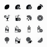 Lemon and lime vector icons set. Lemonade juice, fresh citrus Stock Images