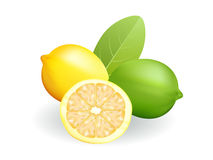 Lemon and lime Royalty Free Stock Image