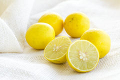Lemon lime on white background Stock Image