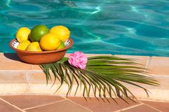 Lemon & Limes Royalty Free Stock Photo