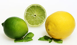 Lemon and limes. A lemon and two limes, one of which has been cut in two, revealing the succulent bitter fresh flesh, laying on some leaves royalty free stock photography