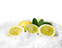 Lemon and Limes 2 Stock Image