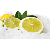 Lemon and Limes 3 Royalty Free Stock Image