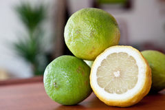 Lemon and limes Stock Images