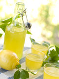 Lemon liqour (limoncello) Stock Photography