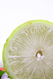 Lemon macro Royalty Free Stock Images