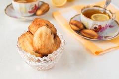 Lemon Madeleines Royalty Free Stock Photo