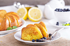Lemon marble bundt cake Royalty Free Stock Images
