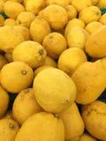 Lemon. In market Royalty Free Stock Image