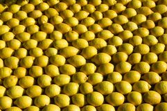 Lemon Menton 2011 celebrates Stock Photography
