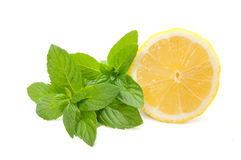 Lemon with mint. Yellow lemon with mint on a white background Stock Photos