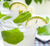 Lemon and mint Stock Photography