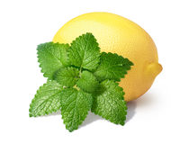 Lemon with mint balm isolated stock photo