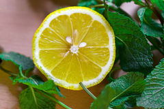 Lemon with mint Royalty Free Stock Photography