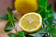 Lemon with mint Royalty Free Stock Image
