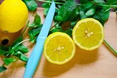 Lemon with mint Stock Images