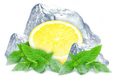 Lemon with mint and ice Stock Image
